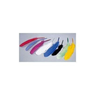 Plumas de oca, multicolor